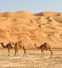 Sand dust